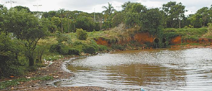 Nada detém o assoreamento do Lago Paranoá   Federação Náutica de Brasília